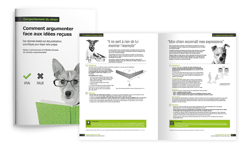 rencontres pour les propriétaires de chat pouvez-vous brancher 4 haut-parleurs Ohm 8 Ohm amp