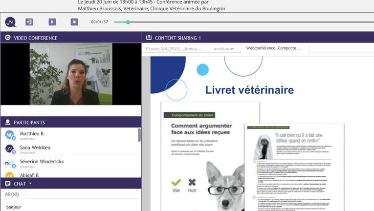 Webconférence comportement chien