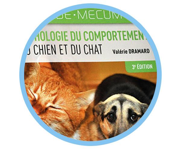 https://anidev.fr/wp-content/uploads/2020/04/thumb-home-conseil-vademecum-600x493.jpg